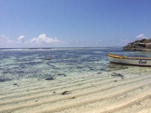 Boot Cool bei Ebbe an der Anse Forbans auf Mahe, Seychellen