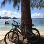Fährräder lehnen an Palme auf La Digue seychellen-reisetipps.com