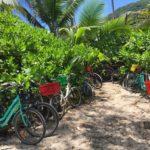 Fahrräder am Grand Anse auf La Digue, Seychellen