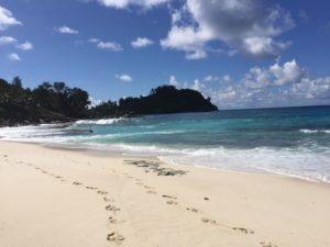 Langer einsamer Sandstrand auf der Seychellen Insel Mahe
